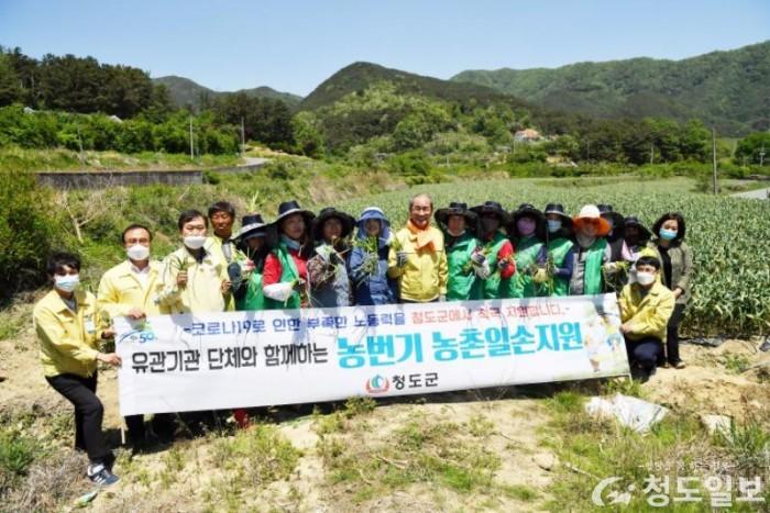 청도민선7기2주년-농번기일손돕기 (1).jpg